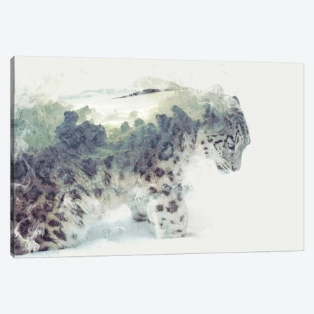 Snow Leopard Canvas Print #DTA39} by Dániel Taylor Canvas Print