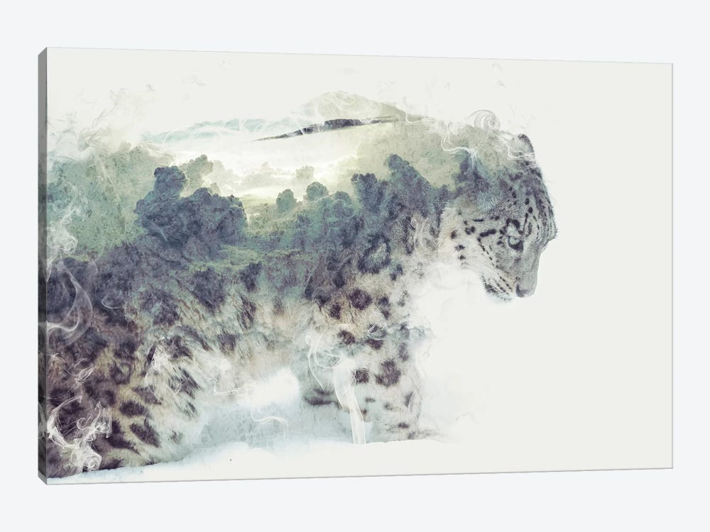 Snow Leopard by Dániel Taylor 1-piece Canvas Wall Art