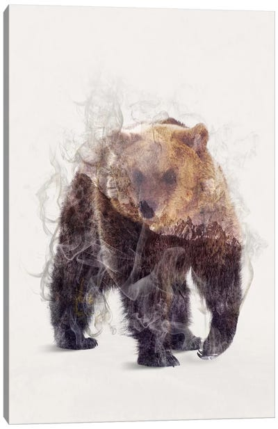 The Bear Canvas Art Print