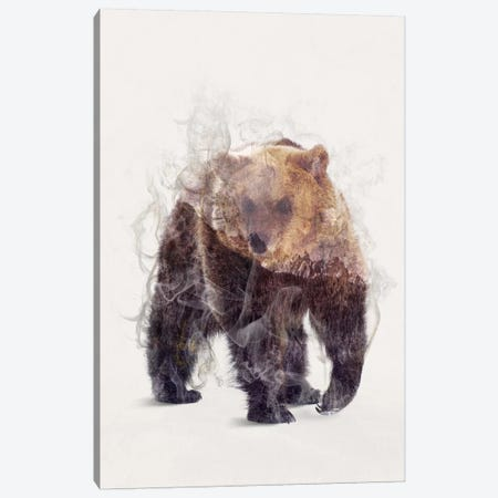 The Bear Canvas Print #DTA43} by Dániel Taylor Canvas Art