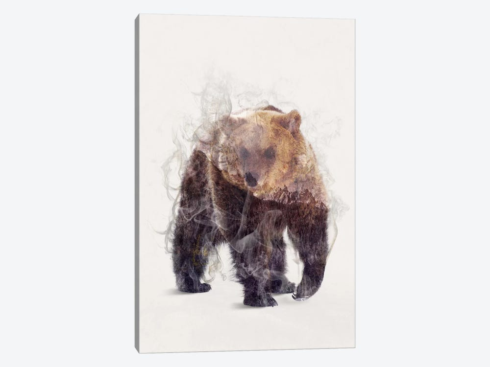 The Bear by Dániel Taylor 1-piece Canvas Print