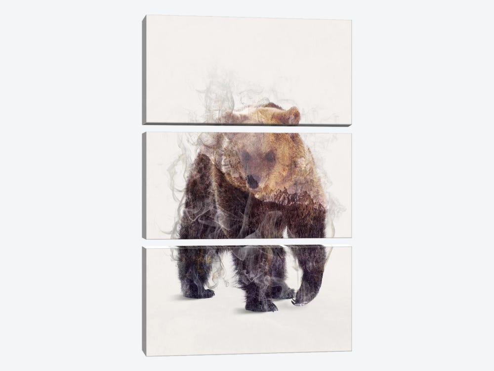 The Bear by Dániel Taylor 3-piece Canvas Art Print