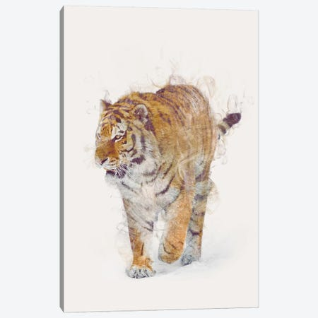 The Tiger Canvas Print #DTA48} by Dániel Taylor Canvas Art