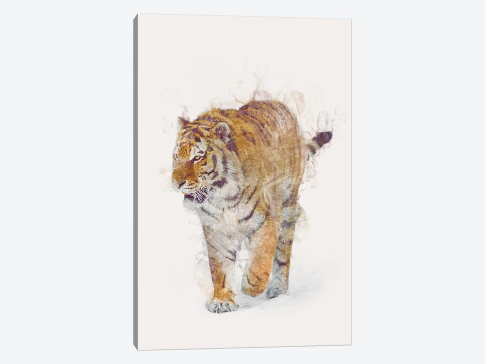 The Tiger by Dániel Taylor 1-piece Canvas Art