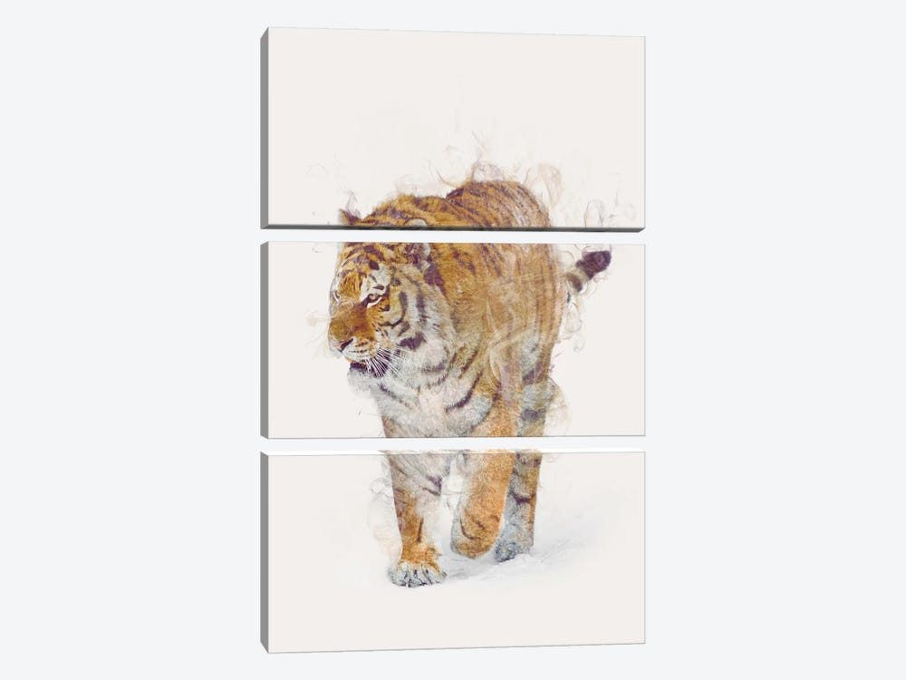 The Tiger by Dániel Taylor 3-piece Canvas Wall Art
