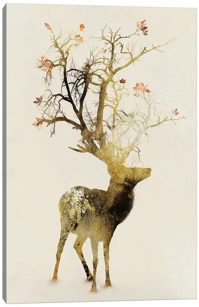 Autumn Canvas Print #DTA4