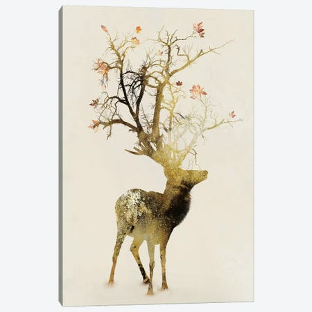 Autumn Canvas Print #DTA4} by Dániel Taylor Canvas Art