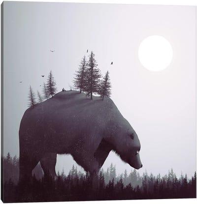 The Wanderer Canvas Print #DTA50
