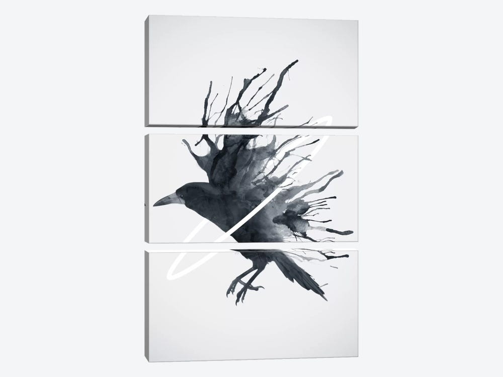 Crow by Dániel Taylor 3-piece Canvas Art