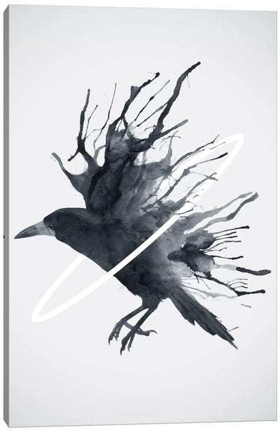 Crow Canvas Art Print