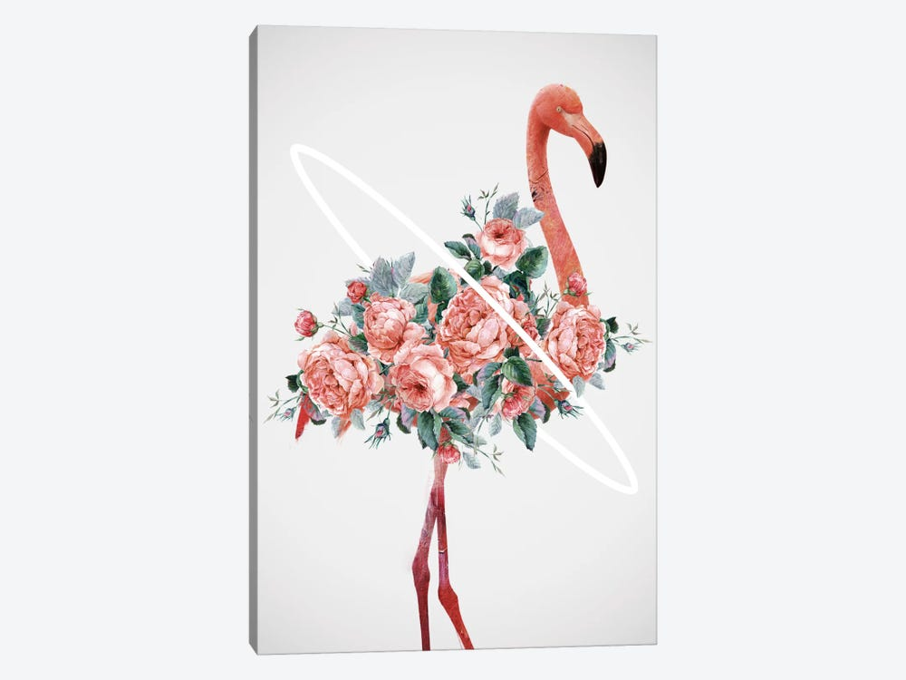 Flamingo by Dániel Taylor 1-piece Canvas Artwork