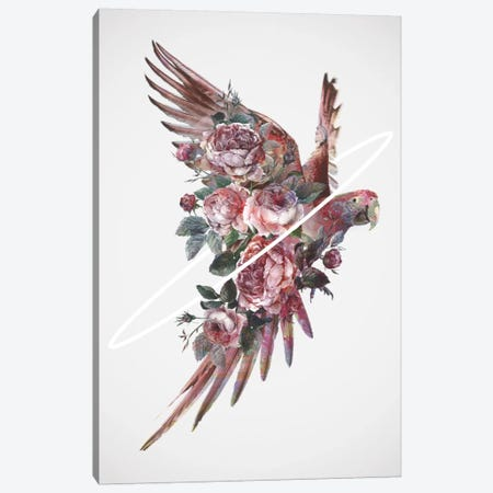 Fly Away I Canvas Print #DTA58} by Dániel Taylor Art Print