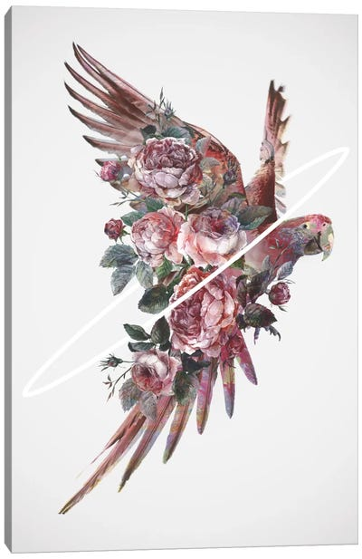 Fly Away I Canvas Art Print