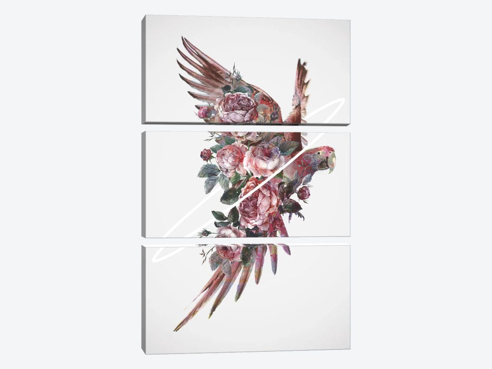 Fly Away I by Dániel Taylor 3-piece Art Print