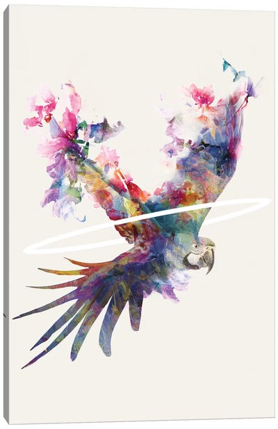 Fly Away II Canvas Art Print