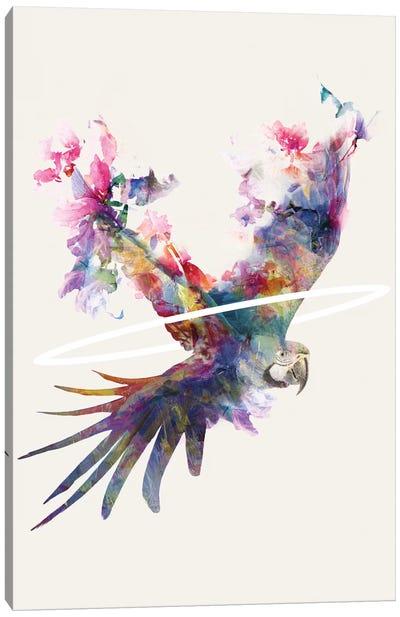 Fly Away II Canvas Print #DTA59