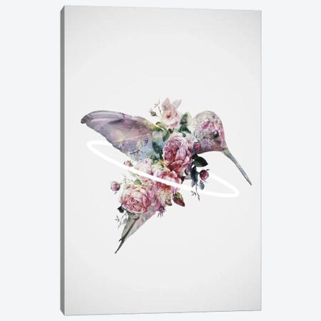 Kolibri Canvas Print #DTA62} by Dániel Taylor Canvas Art