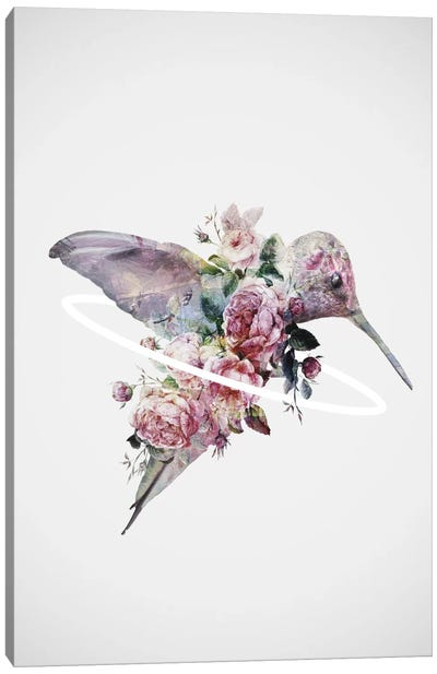 Kolibri Canvas Art Print