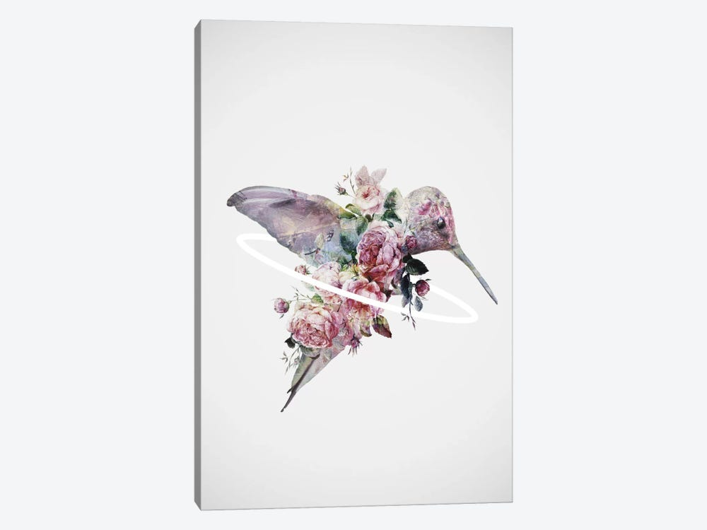 Kolibri by Dániel Taylor 1-piece Canvas Art