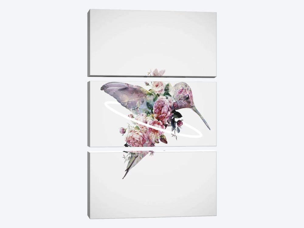 Kolibri by Dániel Taylor 3-piece Canvas Artwork