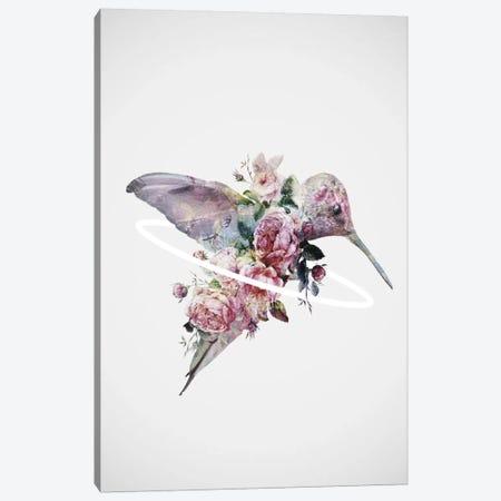 Kolibri Canvas Print #DTA62} by Dániel Taylor Canvas Art