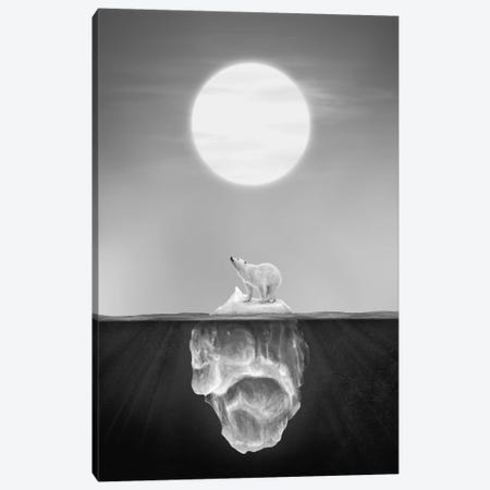 Polar Bear Canvas Print #DTA66} by Dániel Taylor Canvas Art Print