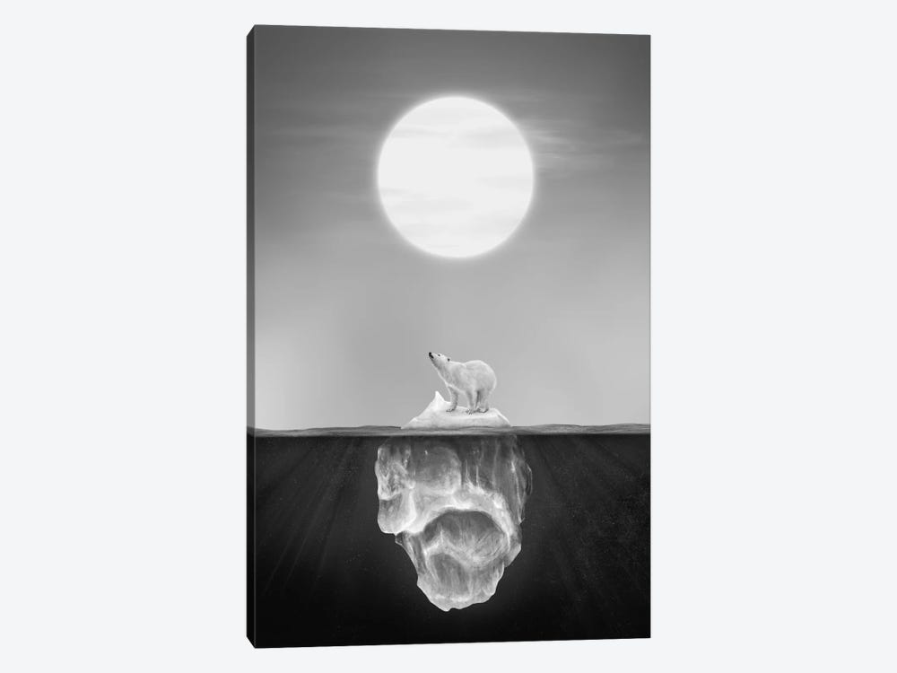 Polar Bear by Dániel Taylor 1-piece Canvas Art