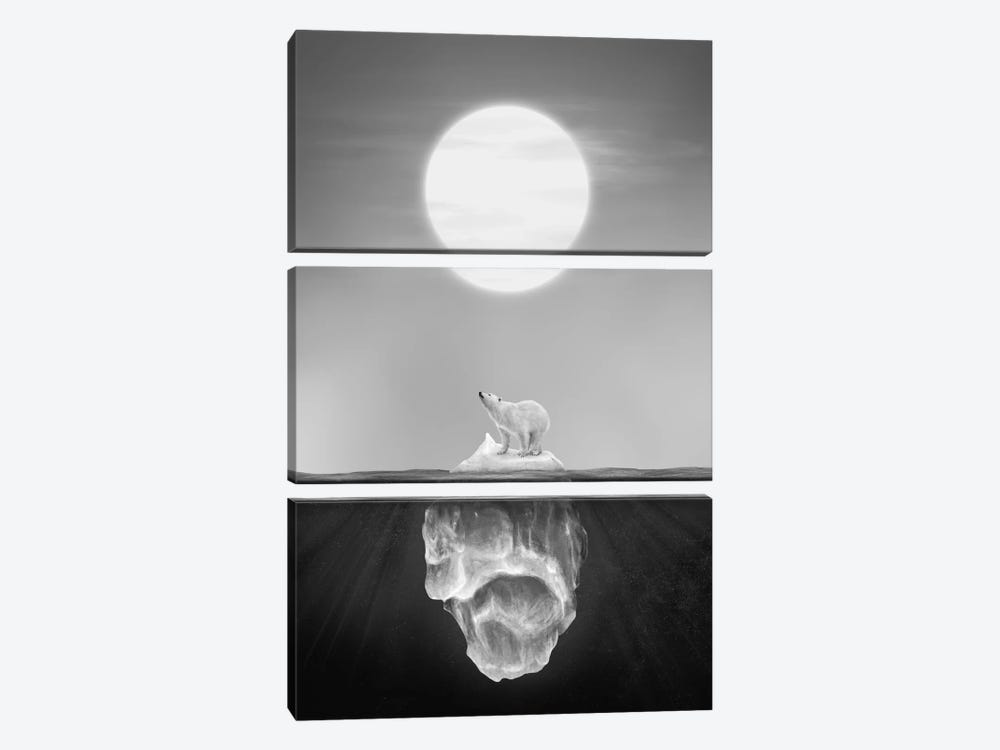 Polar Bear by Dániel Taylor 3-piece Canvas Artwork