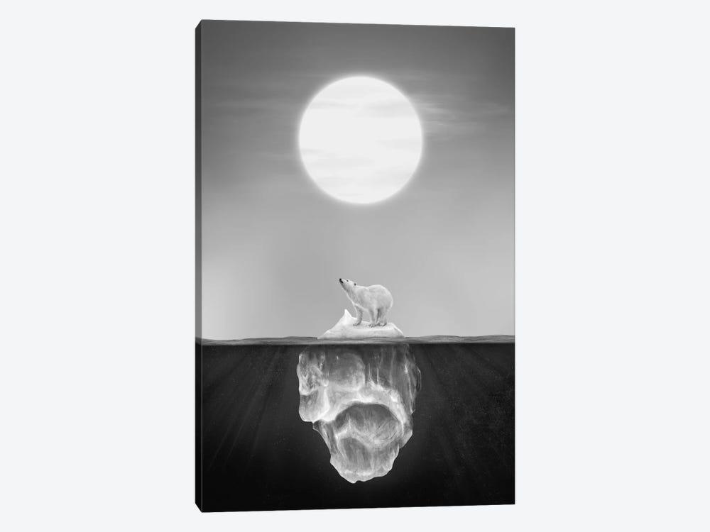 Polar Bear by Dániel Taylor 1-piece Canvas Art