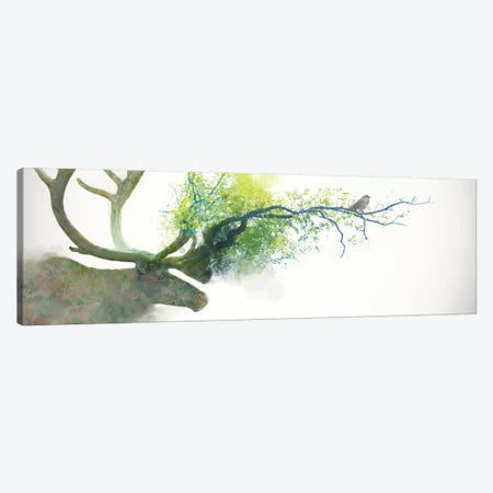 Caribou Canvas Print #DTA7} by Dániel Taylor Canvas Wall Art