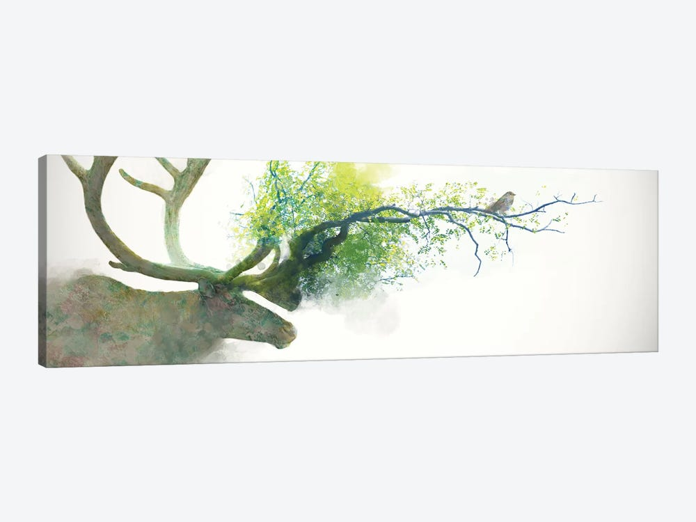 Caribou by Dániel Taylor 1-piece Canvas Art Print