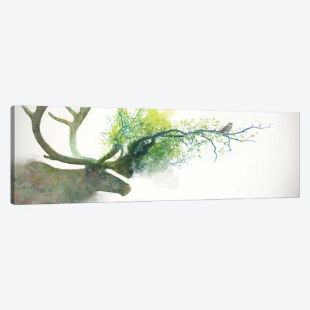 Caribou Canvas Print #DTA7} by Dániel Taylor Canvas Wall Art