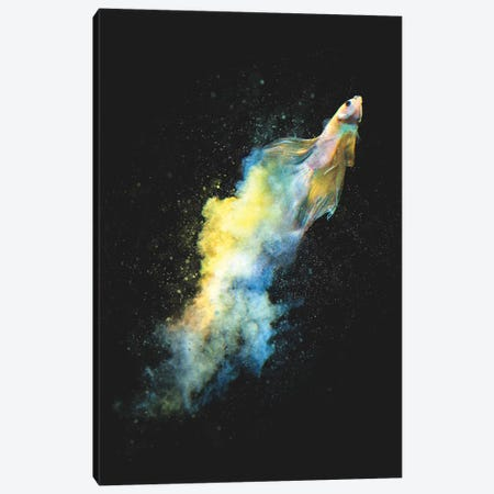 Falling Out Canvas Print #DTA83} by Dániel Taylor Canvas Art