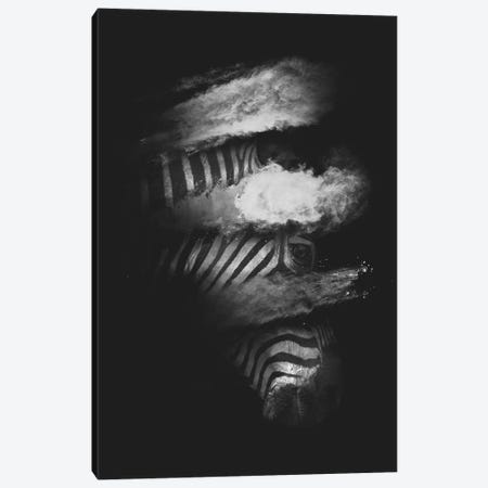 Stripes Canvas Print #DTA87} by Dániel Taylor Canvas Art Print