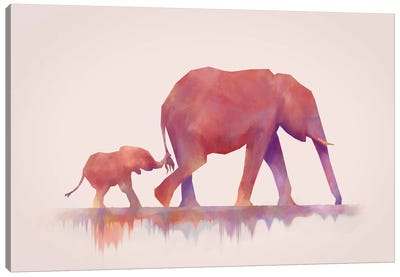 Colors To Life Canvas Art Print