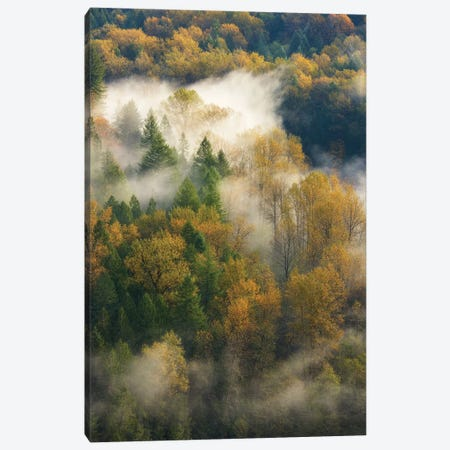 Falls Glow Canvas Print #DTH19} by Dautlich Canvas Artwork
