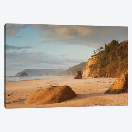 Immortal Beach Canvas Print #DTH31} by Dautlich Canvas Art