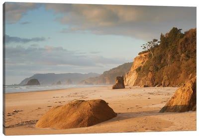 Immortal Beach Canvas Art Print
