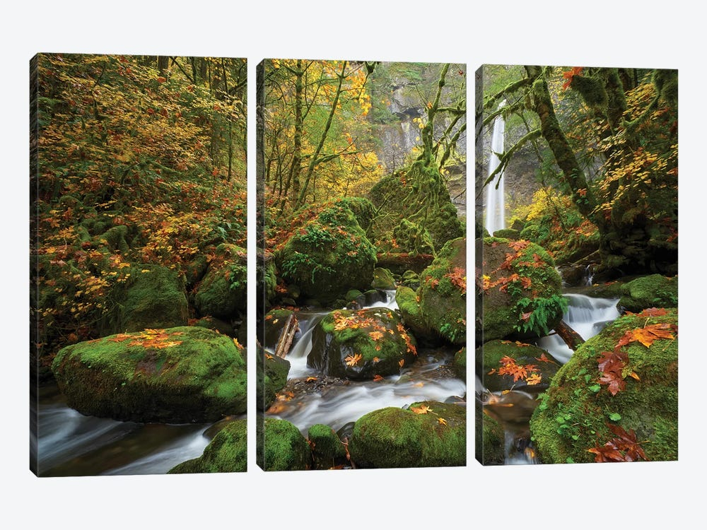 Mossy Dream by Dautlich 3-piece Canvas Art Print