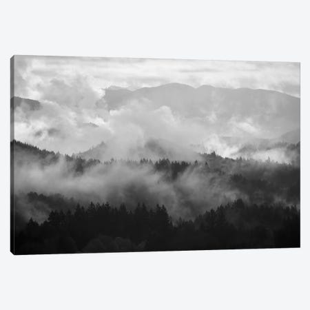 Mountain Mist Dream I Canvas Print #DTH37} by Dautlich Canvas Art Print