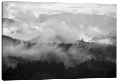 Mountain Mist Dream I Canvas Art Print