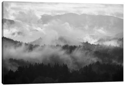 Mountain Mist Dream I Canvas Art Print
