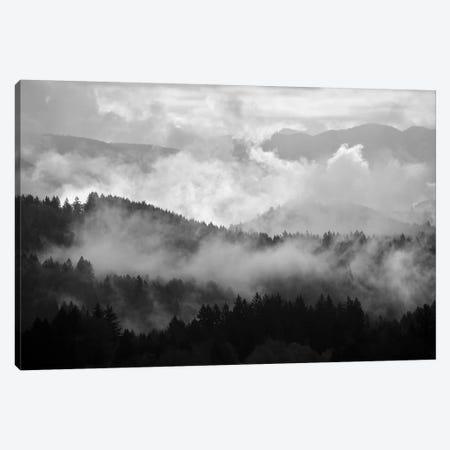 Mountain Mist Dream II Canvas Print #DTH38} by Dautlich Canvas Wall Art