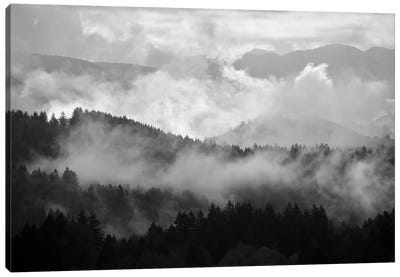 Mountain Mist Dream II Canvas Art Print