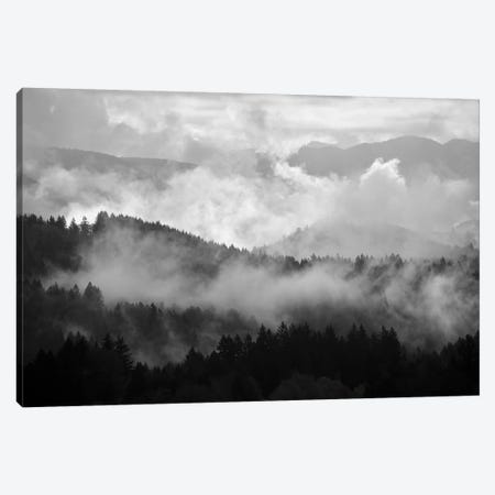 Mountain Mist Dream II Canvas Print #DTH38} by Dautlich Canvas Wall Art