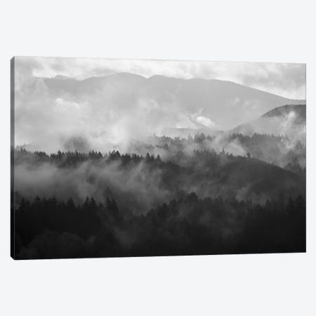 Mountain Mist Dream III Canvas Print #DTH39} by Dautlich Canvas Wall Art