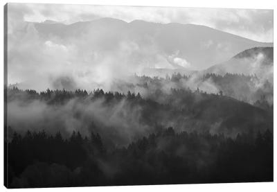 Mountain Mist Dream III Canvas Art Print