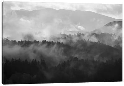 Mountain Mist Dream III Canvas Art Print