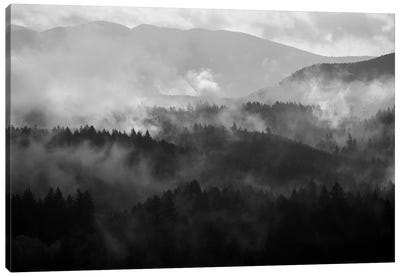 Mountain Mist Dream IV Canvas Art Print