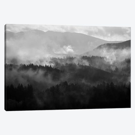 Mountain Mist Dream IV Canvas Print #DTH40} by Dautlich Canvas Print
